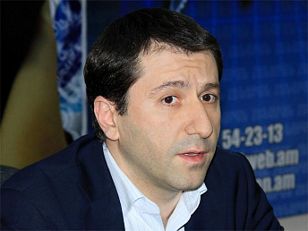 Armenian human rights defender criticizing ministry of economy 2013 activities