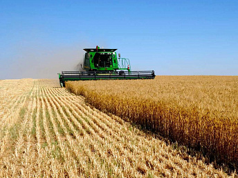 Agriculture ministry: Armenia's farmland expanded to 318,000 hectares in 2013
