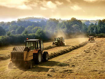 Agriculture ministry: 100 Belarusian tractors brought to Armenia since beginning of this year