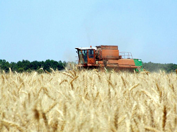 Seed, fertilizer and fuel prices to remain unchanged for Armenian farmers in 2014 – premier